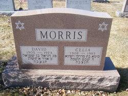 """David """"Dave"""" Morris"""