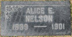 Alice E. Nelson