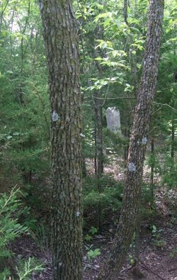 De Soto Cemetery