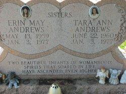 Erin M Andrews