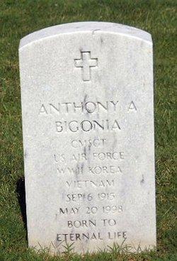 Anthony Allan Bigonia