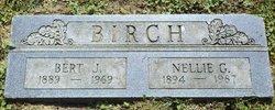 Bert Jacob Birch