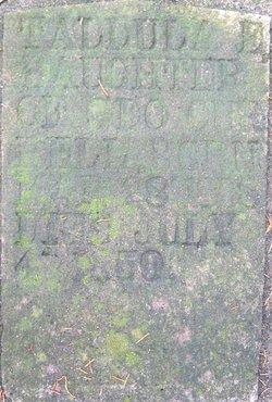 Tallula E. Currell