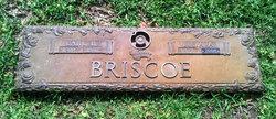 Julia A Briscoe