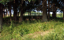 Miller Graveyard