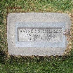 Wayne Ellis Steffensen