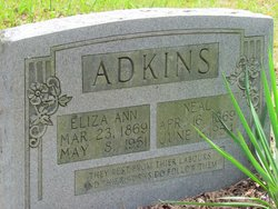 Eliza Ann <I>Higginbotham</I> Adkins