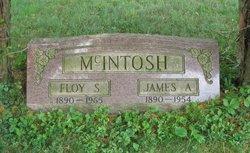 James Alexander McIntosh