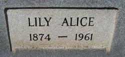 Lily Alice <I>Arrington</I> McCarter