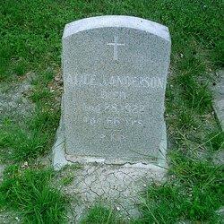 Alice J. Anderson