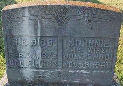 Johnnie <I>Ferguson</I> Bibb