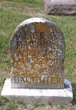 Alice F Hawkins