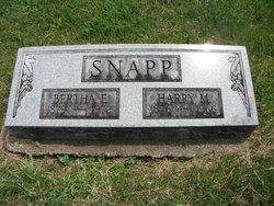 Harry Manning Snapp