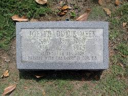 Joseph Thaddeus Meek
