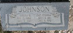 John Andrew Johnson