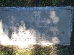 Leslie T. Turner