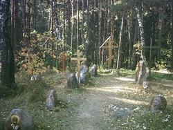 Kurapaty Forest