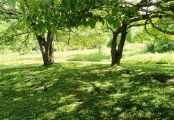 Mink Poor Valley Cemetery