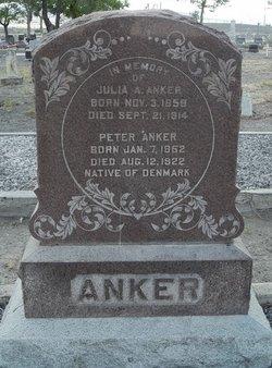 Peter Hanson Anker