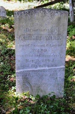 Samuel Ward Jr.
