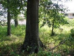 Bailey-Sellers Cemetery