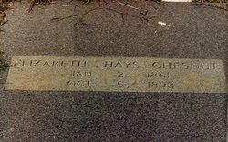 Elizabeth Ann <I>Hays</I> Chesnut