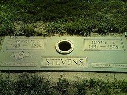 Joyce Y Stevens