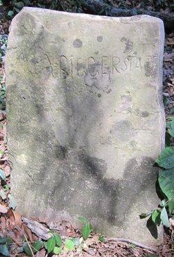 Mary Ann <I>Baker</I> Biggerstaff