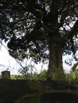 Echols-Eckles Cemetery