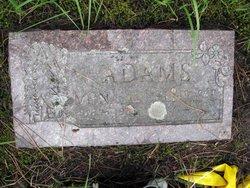 Henry T Adams