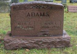 Allie S. Adams