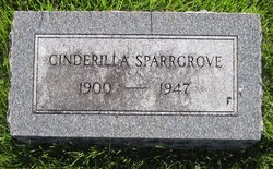 Cinderilla <I>Hawkins</I> Sparrowgrove