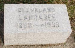 Cleveland Larrabee