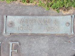 Merenus A Doxie