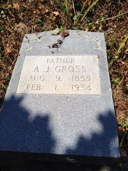 Andrew J Gross