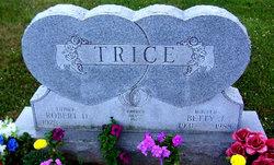 Robert D Trice