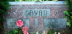 Donald Edward Sayan