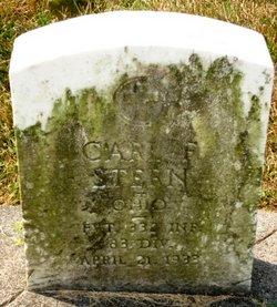 Carl F Stern