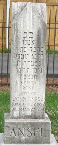 Rose <I>Buch</I> Ansel