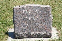 """Dingena """"Dena"""" Schaap"""