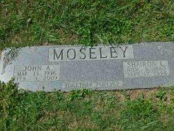 John A. Moseley