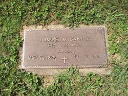 Joseph Michael Banick, Jr
