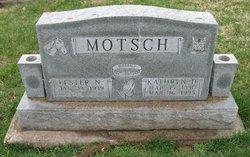Lester N. Motsch