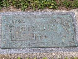 Kenneth R Kindig