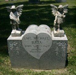 Emil Michael Raia