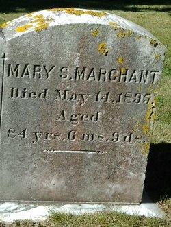 Mary S Marchant