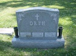 Albert C Orth