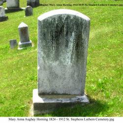 Mary Anna <I>Aughey</I> Horning