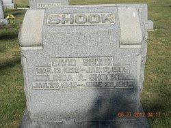 David Shook