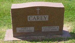 James J Carey